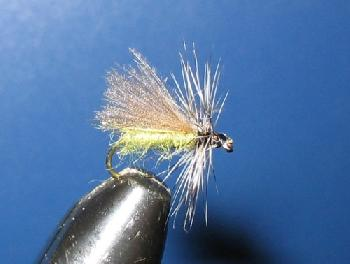 Fiche de montage : Sedge CDC/Hackle