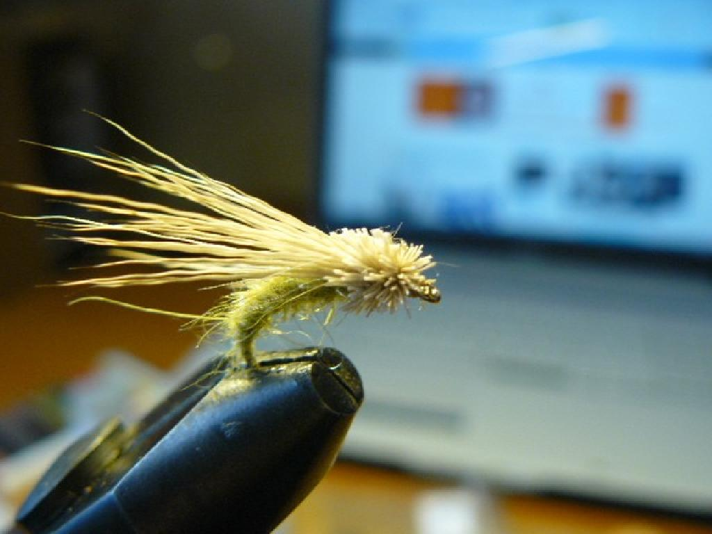 Fiche de montage : Magic Caddis